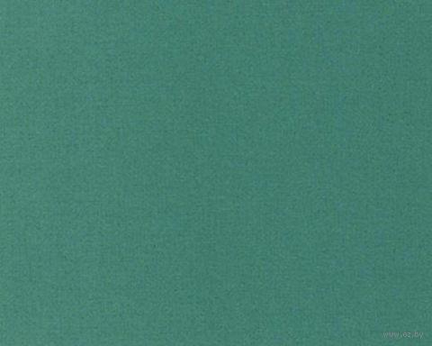 Паспарту (9x13 см; арт. ПУ2767) — фото, картинка