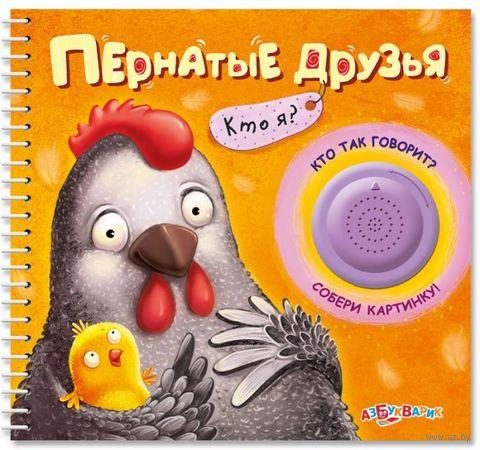 Пернатые друзья. Кто я? Книжка-игрушка. Софья Буланова, Наталья Сысой
