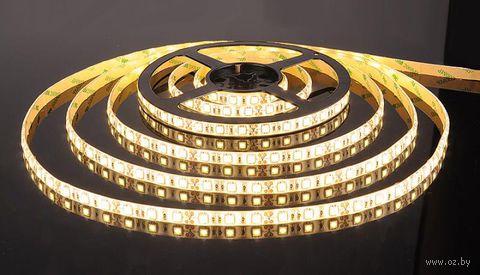 Лента светодиодная LED SMD 5050/60 IP20-14.4W/WW (5 м)