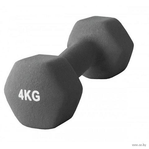 Гантель неопреновая (4 кг; арт. AD-01-4) — фото, картинка