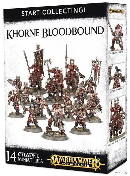 Warhammer Age of Sigmar. Khorne Bloodbound. Start Collecting (70-82) — фото, картинка