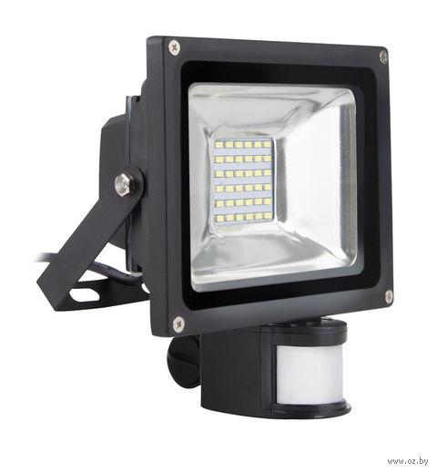 Прожектор садовый светодиодный LED FL Sensor 20W/6500K/65 — фото, картинка
