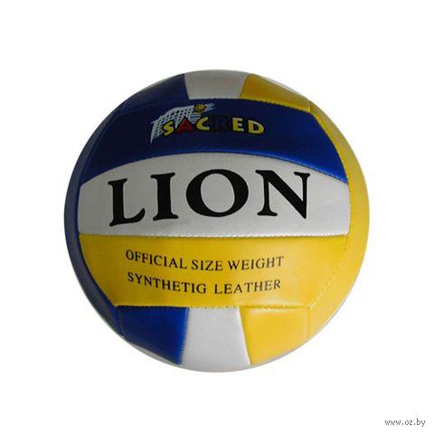 Мяч волейбольный (арт. P3308) — фото, картинка
