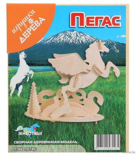 """Сборная деревянная модель """"Пегас"""" — фото, картинка"""