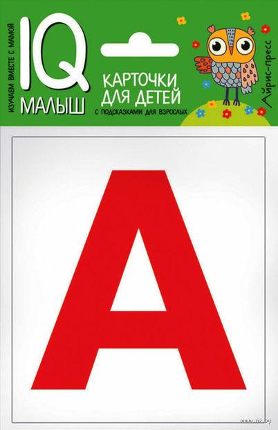 Касса букв. Набор карточек для детей — фото, картинка
