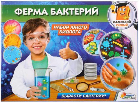 "Набор для опытов ""Ферма бактерий"" — фото, картинка"