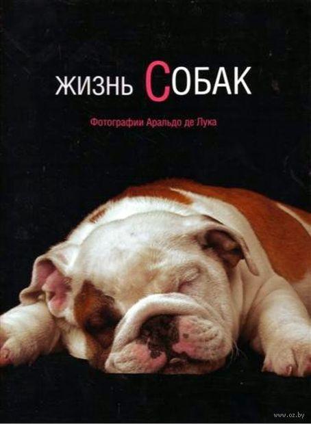 Жизнь собак. Аральдо де Лука