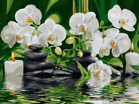 "Картина по номерам ""Медитация"" (300х400 мм) — фото, картинка"
