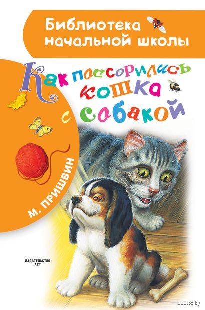 Как поссорились кошка с собакой — фото, картинка
