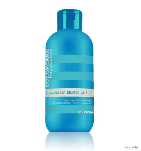 "Шампунь для волос ""Re-Animation Shampoo"" (100 мл) — фото, картинка"