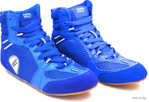 Обувь для бокса PS006 (р. 40; синяя) — фото, картинка
