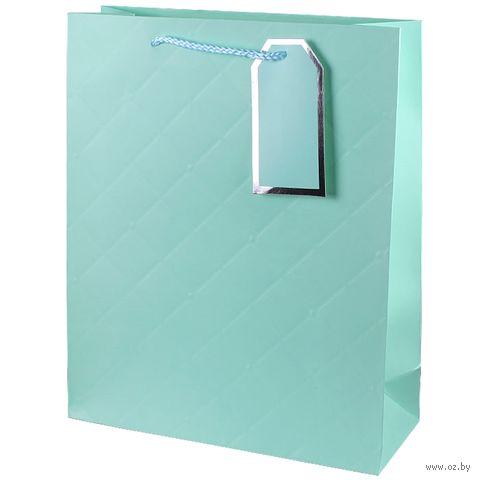 "Пакет бумажный подарочный ""Style"" (26х32х10 см) — фото, картинка"
