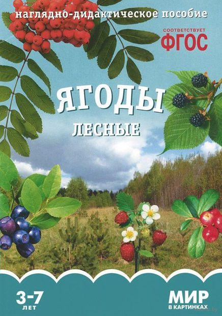 Ягоды лесные. Наглядно-дидактическое пособие. Для детей 3-7 лет. Т. Минишева