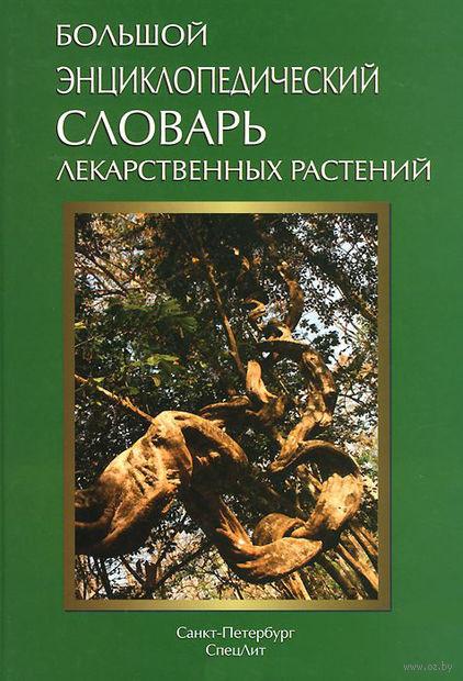 Большой энциклопедический словарь лекарственных растений — фото, картинка