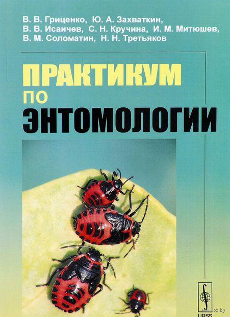 Практикум по энтомологии — фото, картинка