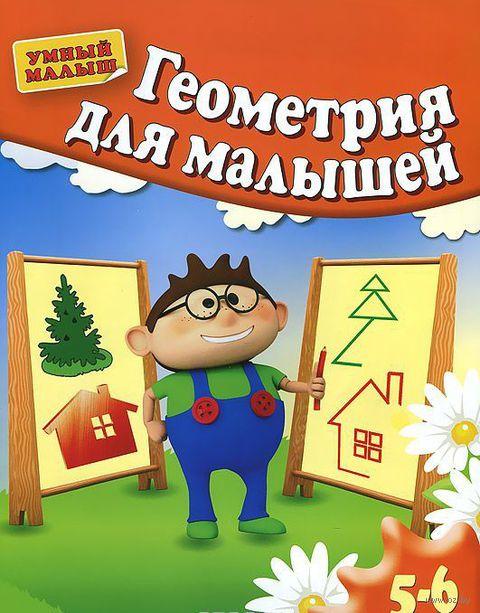 Геометрия для малышей 5-6 лет — фото, картинка