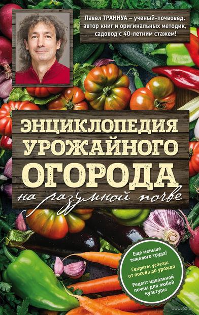 Энциклопедия урожайного огорода на разумной почве — фото, картинка