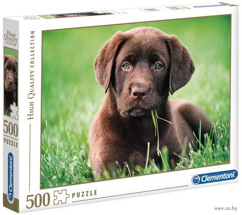 """Пазл """"Шоколадный щенок"""" (500 элементов) — фото, картинка"""