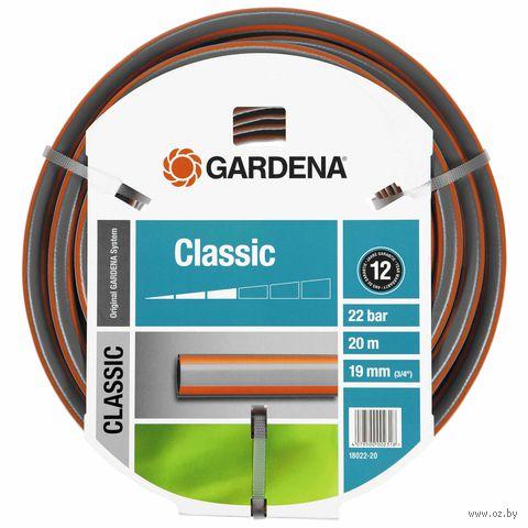 "Шланг поливочный ""Gardena Classic"" 3/4"" (19 мм х 20 м) — фото, картинка"