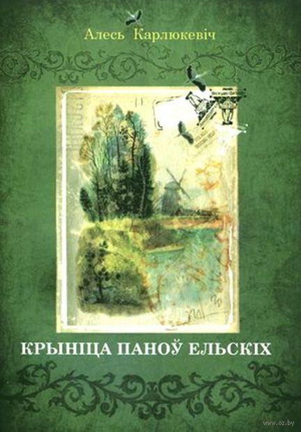 Крыніца паноў Ельскіх — фото, картинка