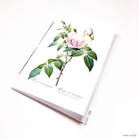 """Блокнот белый """"Роза"""" А5 (726)"""