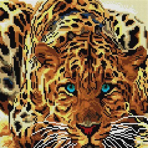 "Алмазная вышивка-мозаика ""Леопард"" (300х300 мм) — фото, картинка"