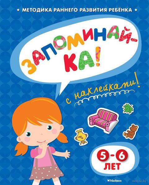 Запоминай-ка. 5-6 лет. Ольга Земцова