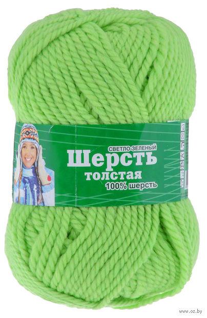 """Пряжа """"Астра. Wool XL"""" (светло-зеленая; 100 г; 110 м) — фото, картинка"""
