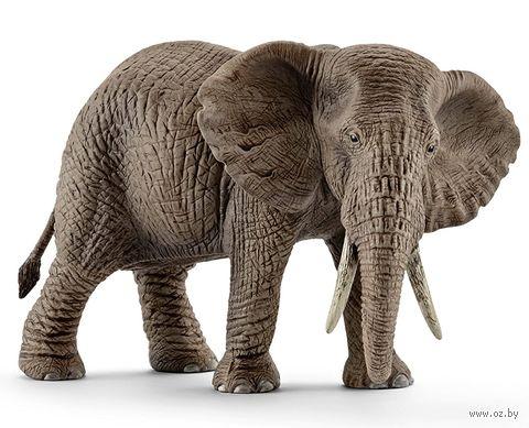 "Фигурка ""Африканский слон, самка"" (9 см) — фото, картинка"