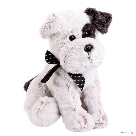 """Мягкая игрушка """"Собака Джек"""" (22 см)"""