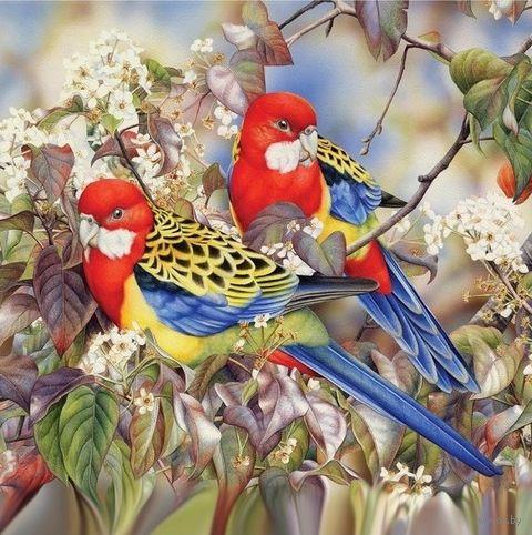 """Алмазная вышивка-мозаика """"Райские птички"""" (400х400 мм) — фото, картинка"""