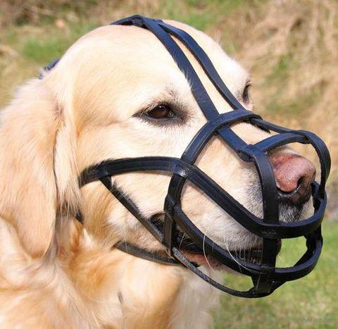"Намордник для собак ""Bridle Leather"" (размер XL; 31/26 см)"