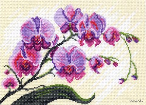 """Канва с нанесенным рисунком """"Орхидеи"""" (арт. 1318)"""