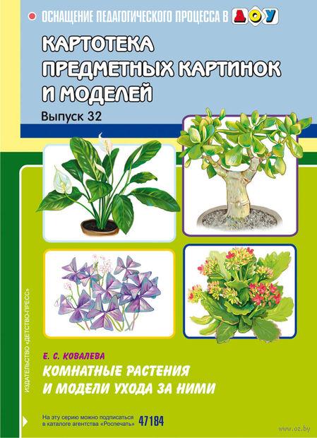 Картотека предметных картинок и моделей. Выпуск 32. Комнатные растения и модели ухода за ними — фото, картинка