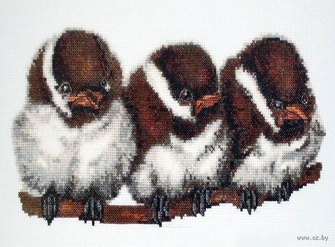 """Вышивка крестом """"Птенчики"""" (310х140 мм) — фото, картинка"""