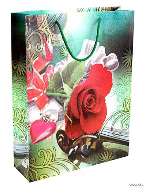 "Пакет пластиковый подарочный ""Для тебя"" (24х18х7 см; арт. 10647681)"