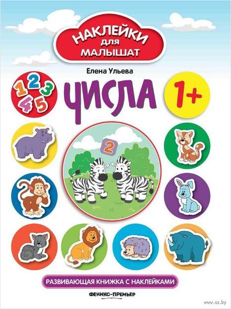Числа. Развивающая книжка с наклейками. Елена Ульева