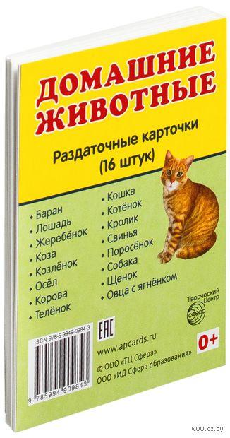 Домашние животные (16 раздаточных карточек)