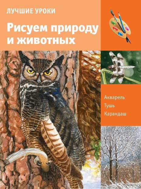 Учимся рисовать природу и животных — фото, картинка