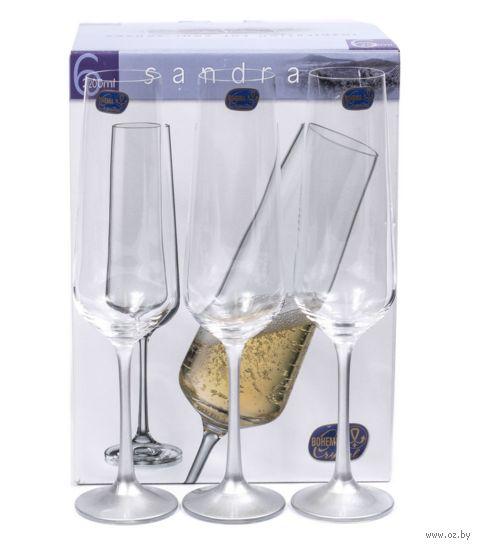 """Бокал для шампанского стеклянный """"Sandra"""" (6 шт.; 200 мл; арт. 40728/382857/200) — фото, картинка"""