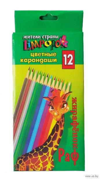 """Набор карандашей цветных """"Limpopo"""" (12 цветов) — фото, картинка"""
