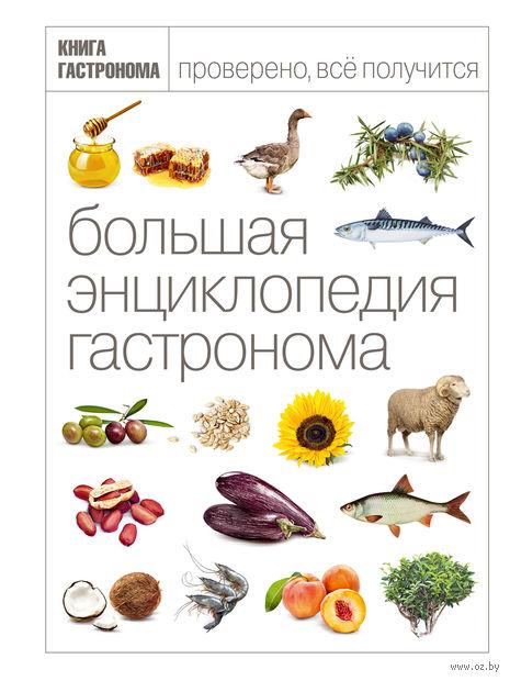 Большая энциклопедия гастронома — фото, картинка