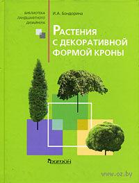 Растения с декоративной формой кроны. Ирина Бондорина