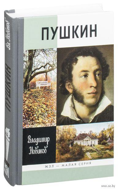 Пушкин. Владимир Новиков