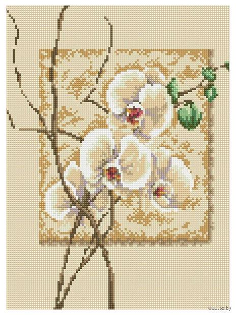 """Алмазная вышивка-мозаика """"Орхидея"""" (300x400 мм) — фото, картинка"""