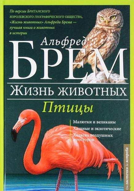 Жизнь животных. Том 6. Птицы. Л-Я (в 10 томах) — фото, картинка