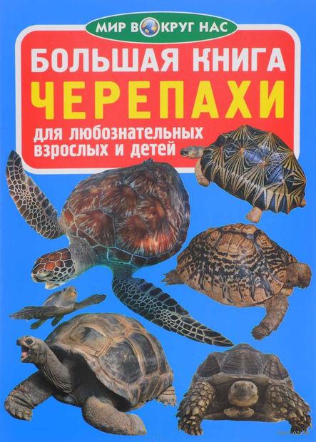 Большая книга. Черепахи — фото, картинка