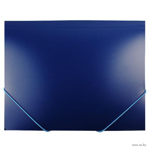 "Папка на резинке ""Darvish"" (А4; синяя; арт. DV055R)"