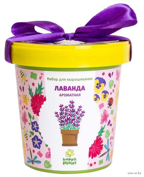 """Набор для выращивания растений """"Лаванда ароматная"""" — фото, картинка"""