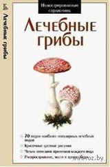 Лечебные грибы — фото, картинка